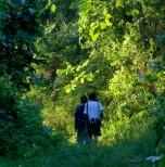 Tabin Wildlife Reserve (4 Days 3 Nights)