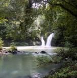 Tabin Wildlife Reserve (3 Days 2 Nights)