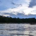 Experience in Borneo